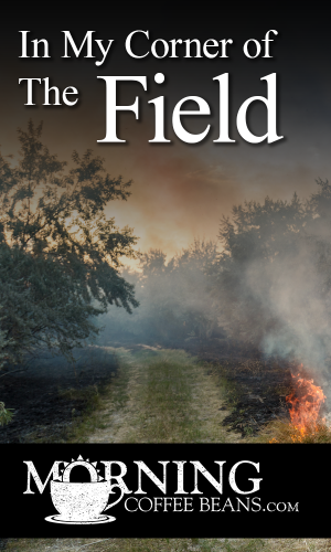 I grew up on a farm. At the end of each summer or harvest year, my dad set fire to the fields to make ready for seeding the following spring. My brothers and I helped him by containing the fire in our corner of the fields. We didn't have vast fields, but this was a low-cost alternative to tilling in...
